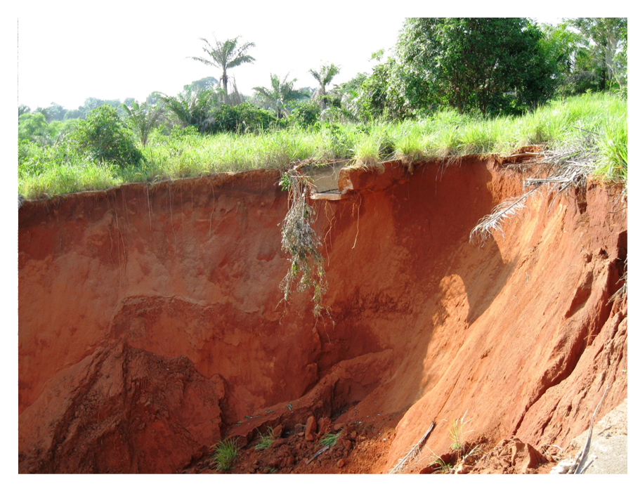 Review of gully erosion in nigeria causes impacts and for What is meant by soil